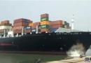 达飞11万吨新造箱船撞向码头!