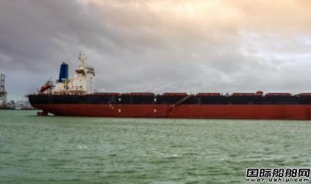 Diana和嘉能可达成散货船续租协议