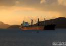 DryShips出资2亿美元收购4艘船舶