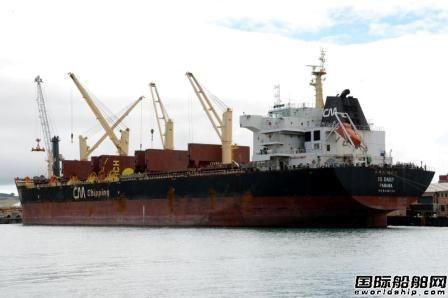 净赚800万美元~Tomini出售2艘超灵便型散货船