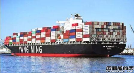 阳明海运加租4艘同时退租7艘集装箱船
