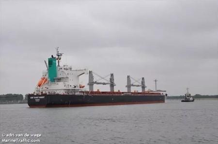 Pacific Basin又收购一艘supramax型散货船