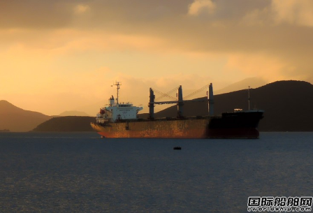 DryShips收购一艘Newcastlemax型散货船