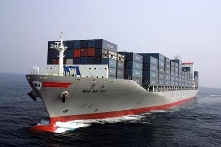 放弃备选订单,万海航运称今年业绩难料