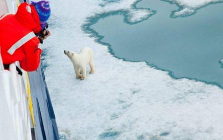 IMO秘书长讨论北极航运安全问题