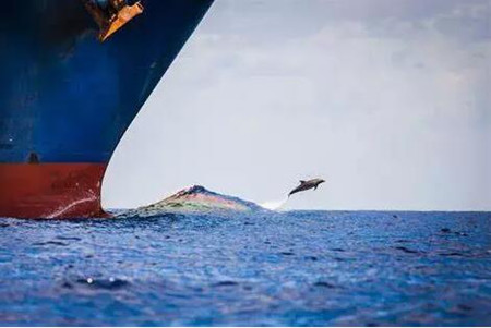 技术引领,智能船舶发展路在脚下