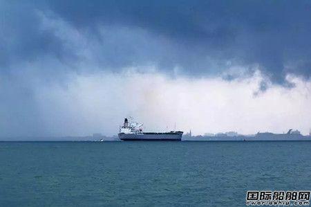 船舶主机功率减半?限硫令造成市场混乱