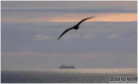30艘邮轮仍漂在海上?邮轮公司集体停航