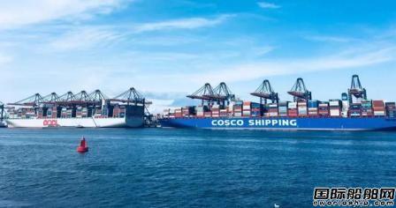 中远海控2019年净利润同比大增450%