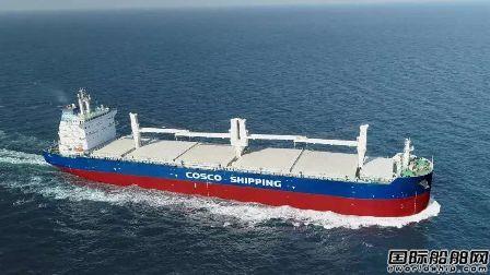 """中远海运集团和海南合作首艘船""""落户""""中国洋浦"""
