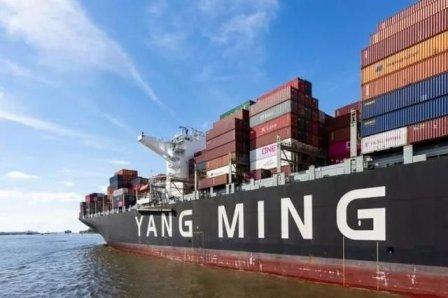 阳明海运:集运市场不会重演2009年惨状