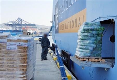 釜山港16名俄罗斯船员确诊感染新冠上百人紧急隔离