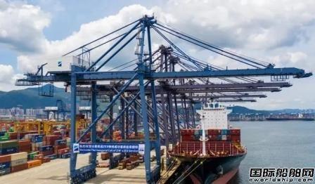 小船吃香?疫情重塑集装箱船航运市场格局