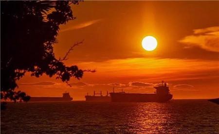 干散货航运市场周评