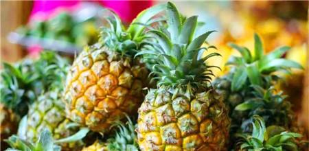 德路里看好水果海运冷链前景预测未来4年年均增长率将超6%