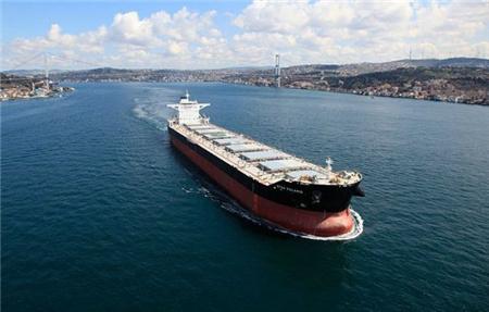 Star Bulk收购三艘散货船