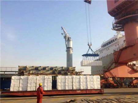 单船45000吨!中远海运特运鼎海轮纸浆运输创纪录