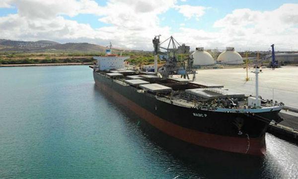 Castor Maritime再添一艘Kamsarmax型散货船