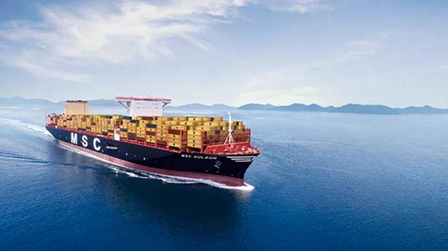 地中海航运:北极环境问题应置于利润之上
