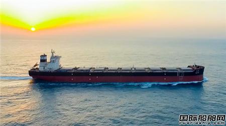 第500艘!外高桥造船完工总量位居中国第一