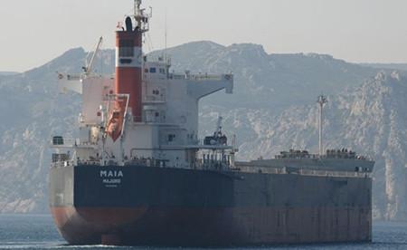 Diana和Olam International签订两艘散货船新租约