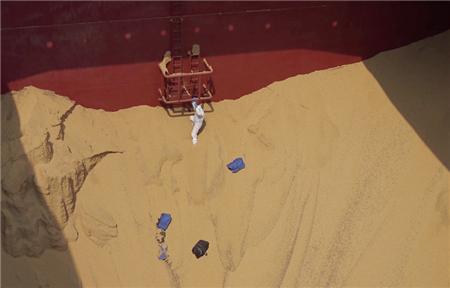 200多公斤可卡因!青岛查获一起特大外籍船舶走私毒品案件