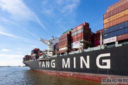 快下单了!阳明海运首次证实将订造两万箱超大型船