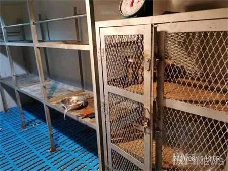 贺维轮船长:19名中国船员盐煮黄豆吃了一星期