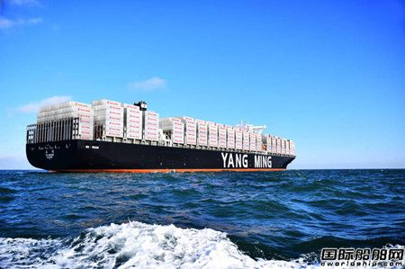 阳明海运8月业绩再创新高将开直航中东加班船