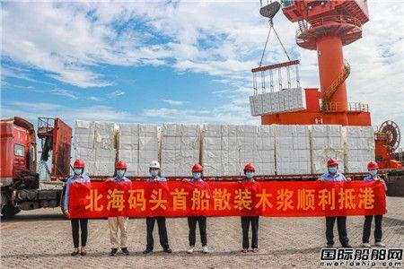 """""""金成鑫""""轮装载4200吨木浆顺利靠抵北部湾港北海港区"""