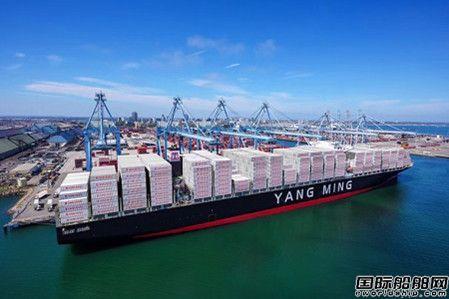 """20艘超大型集装箱船订单定了?阳明海运""""辟谣"""""""